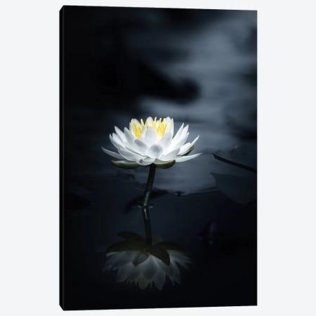 Reflection Canvas Print #TSU9} by Takashi Suzuki Canvas Artwork