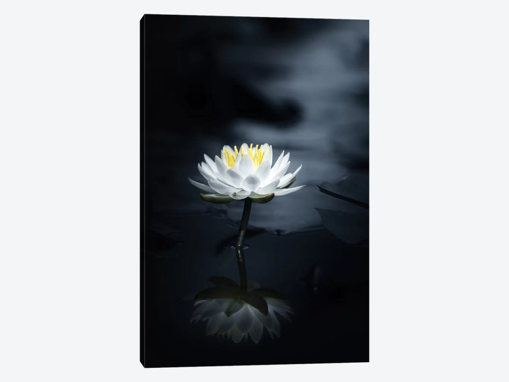 Reflection by Takashi Suzuki 1-piece Canvas Art