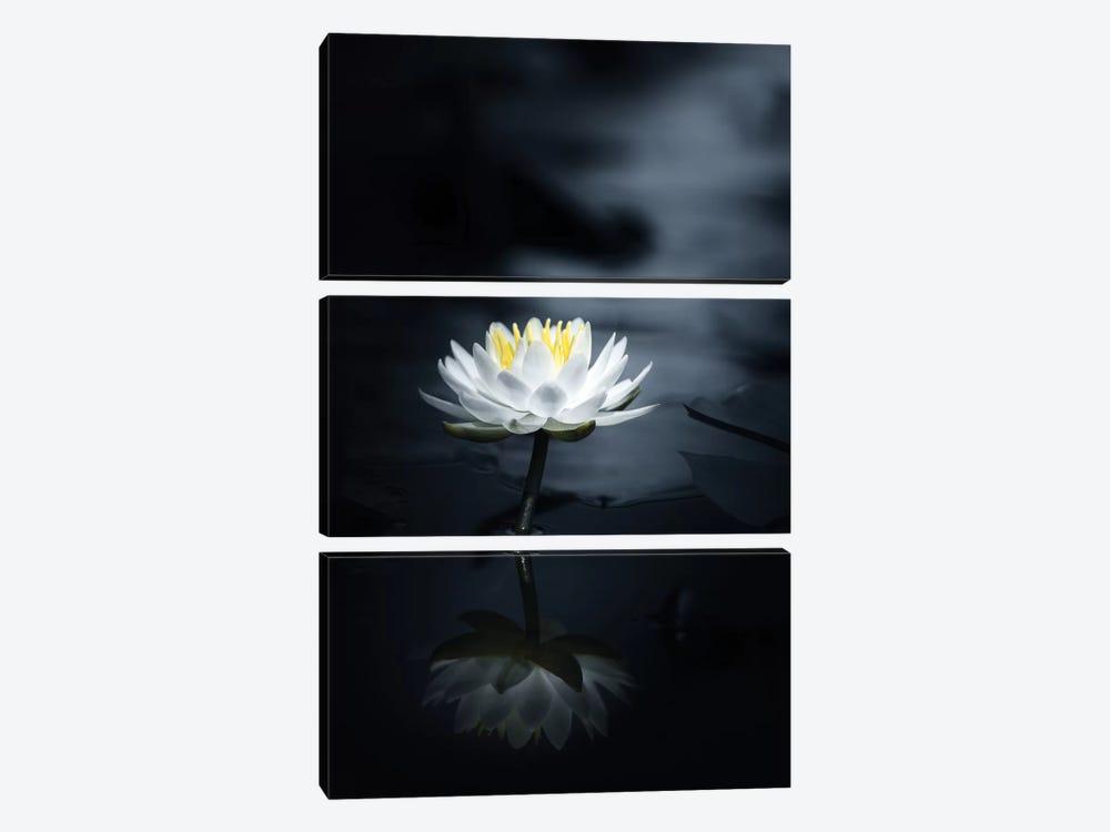 Reflection by Takashi Suzuki 3-piece Canvas Artwork