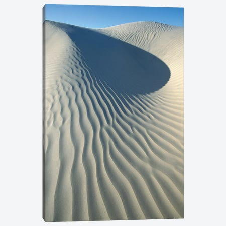 Wind Patterns In Sand Dunes, Magdalena Island, Pacific Coast, Baja California, Mexico Canvas Print #TUI65} by Tui De Roy Canvas Wall Art