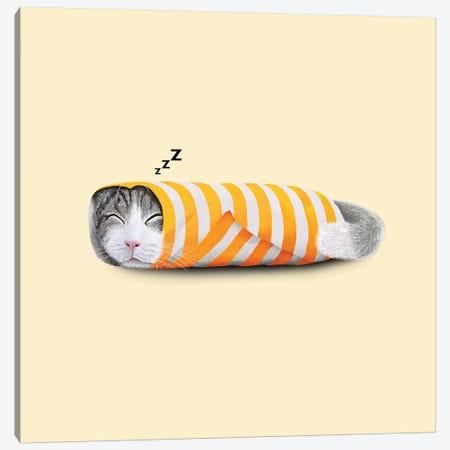 Cat In The Paper Canvas Print #TUM14} by Tummeow Art Print