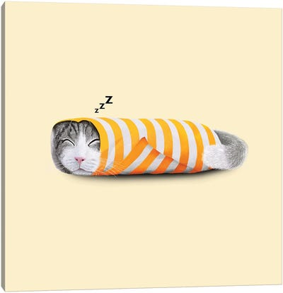 Cat In The Paper Canvas Art Print