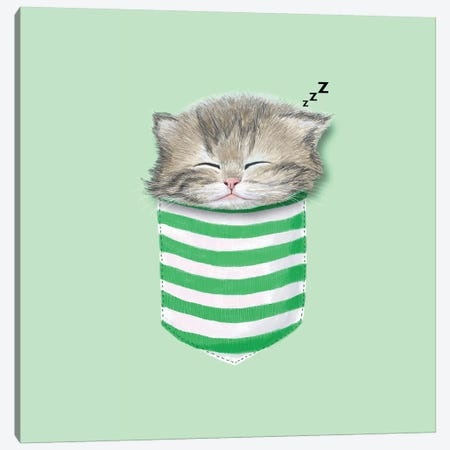 Cat In The Pocket Canvas Print #TUM15} by Tummeow Canvas Art Print