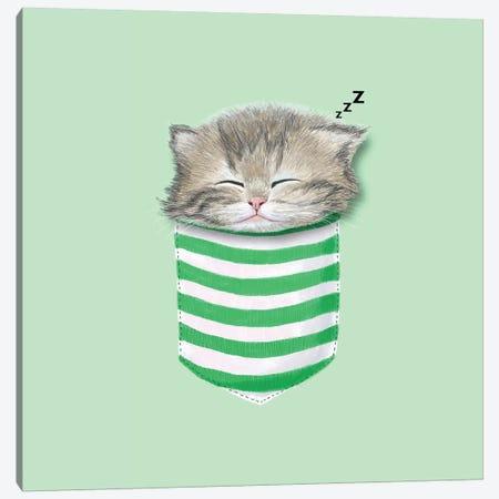 Cat In The Pocket Canvas Print #TUM15} by Tummeow Canvas Art Print