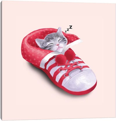 Cat In The Shoe Canvas Art Print