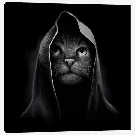 Cat Portrait Canvas Print #TUM19} by Tummeow Canvas Art