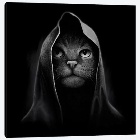 Cat Portrait Canvas Print #TUM19} by Tummeow Canvas Art