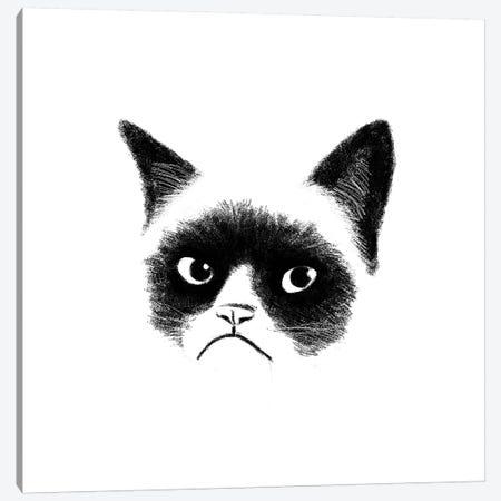 Angry Cat Canvas Print #TUM1} by Tummeow Canvas Art Print