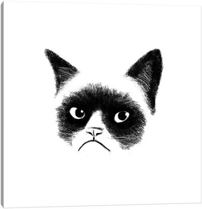 Angry Cat Canvas Art Print