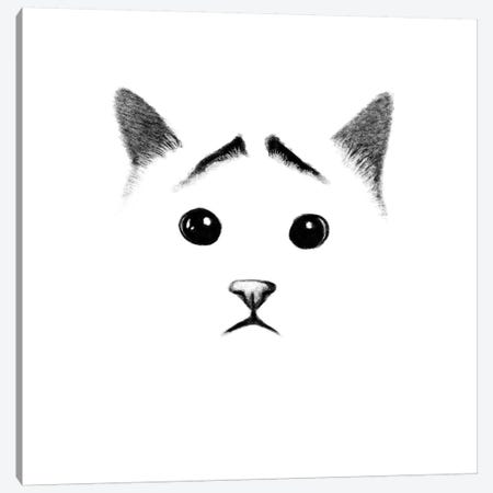 Cat With Eyebrows Canvas Print #TUM20} by Tummeow Canvas Print