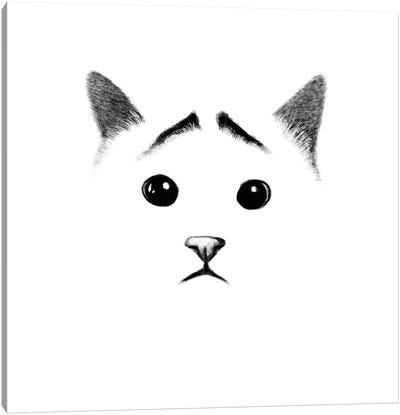Cat With Eyebrows Canvas Art Print