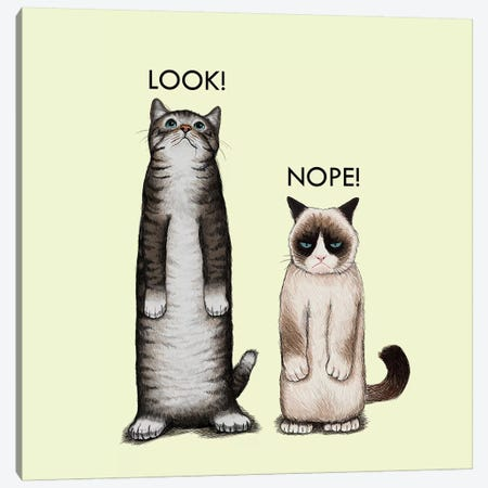 Look Nope Canvas Print #TUM45} by Tummeow Canvas Art