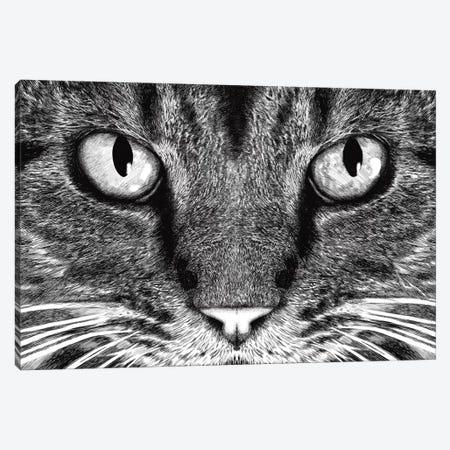 The Cat Canvas Print #TUM56} by Tummeow Canvas Print
