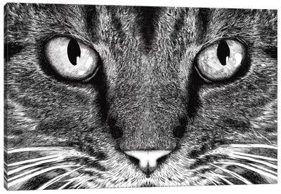 The Cat Canvas Art Print