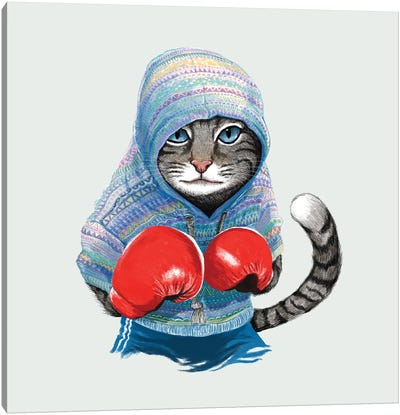 Boxing Cat I Canvas Art Print