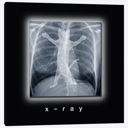 X-ray Canvas Print #TUM64} by Tummeow Canvas Wall Art