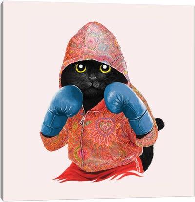Boxing Cat II Canvas Art Print