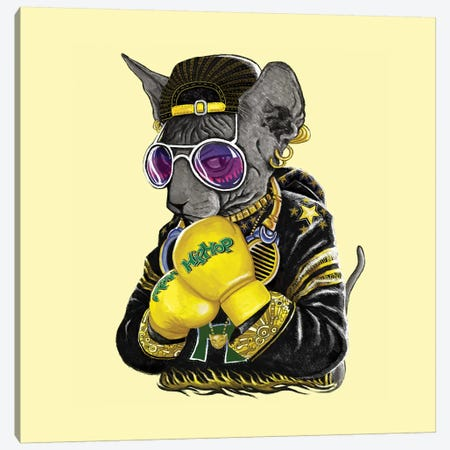 Boxing Cat III Canvas Print #TUM7} by Tummeow Canvas Artwork