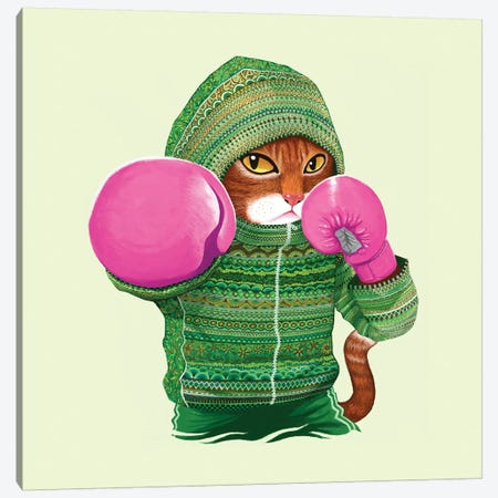 Boxing Cat IV Canvas Print #TUM8} by Tummeow Canvas Print