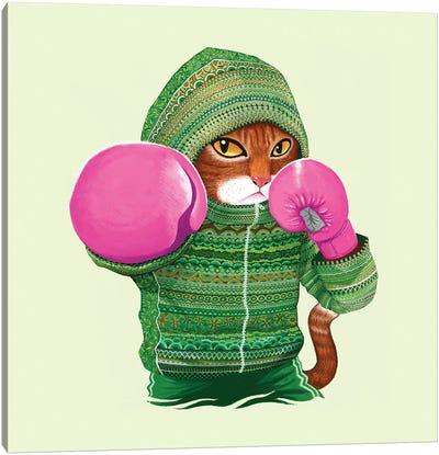 Boxing Cat IV Canvas Art Print