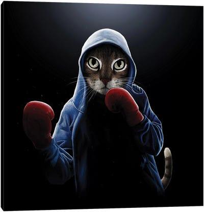 Boxing Cool Cat Canvas Art Print