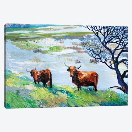Dutch Bulls Canvas Print #TVA10} by Anastasia Trusova Canvas Artwork