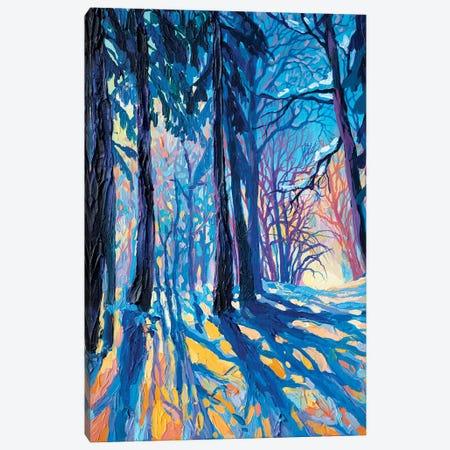 Frost Und Sonne 3-Piece Canvas #TVA14} by Anastasia Trusova Canvas Art Print