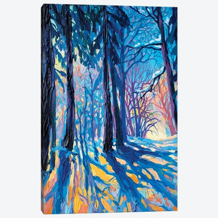 Frost Und Sonne Canvas Print #TVA14} by Anastasia Trusova Canvas Art Print