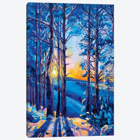 Once In The Winter Canvas Print #TVA27} by Anastasia Trusova Canvas Artwork
