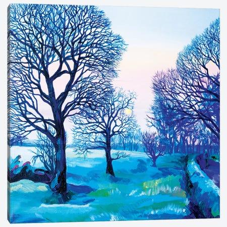 Road To Lichtenbusch Canvas Print #TVA33} by Anastasia Trusova Canvas Artwork
