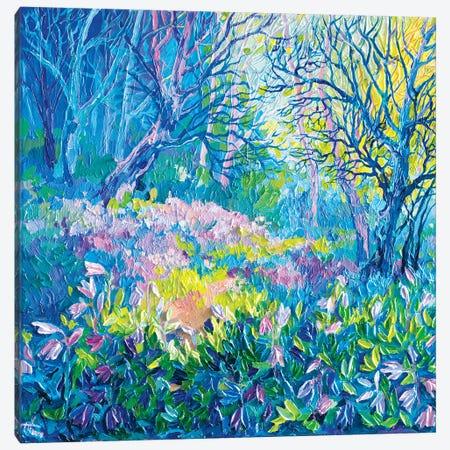 Spring On The Doorstep Canvas Print #TVA40} by Anastasia Trusova Canvas Art Print