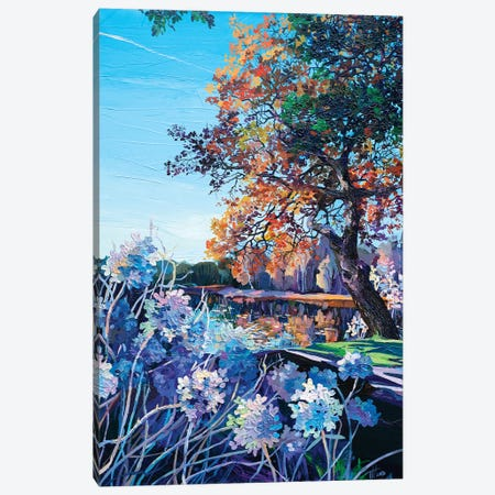 View From The Flowerbed Canvas Print #TVA46} by Anastasia Trusova Canvas Art