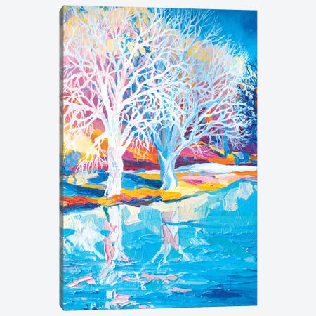 Winter In The Netherlands I Canvas Print #TVA48} by Anastasia Trusova Canvas Art Print