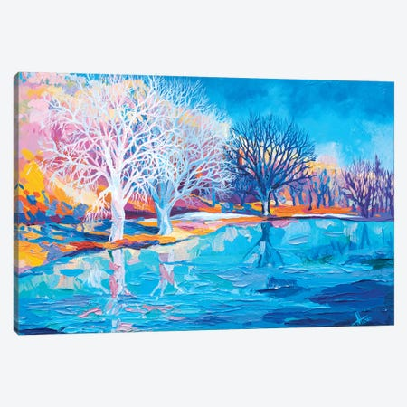 Winter In The Netherlands II Canvas Print #TVA49} by Anastasia Trusova Canvas Print