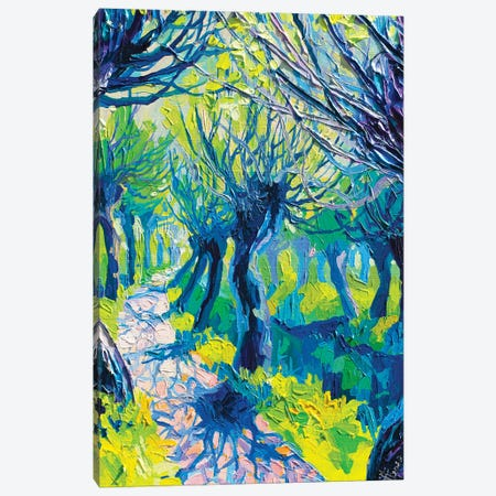 Distance 2 Meters Canvas Print #TVA58} by Anastasia Trusova Canvas Artwork