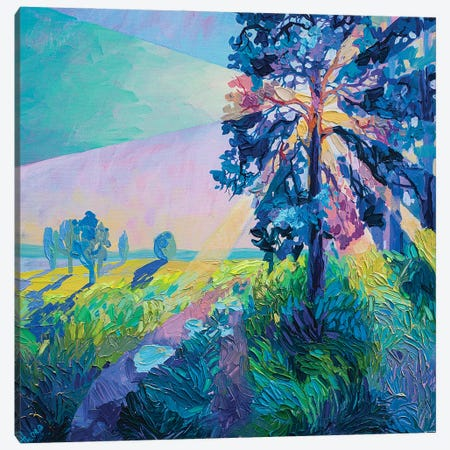 tree in the rays Canvas Print #TVA70} by Anastasia Trusova Canvas Artwork