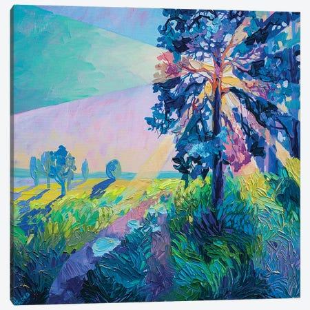 tree in the rays Canvas Print #TVA70} by Anastasia Trusova Canvas Artwork