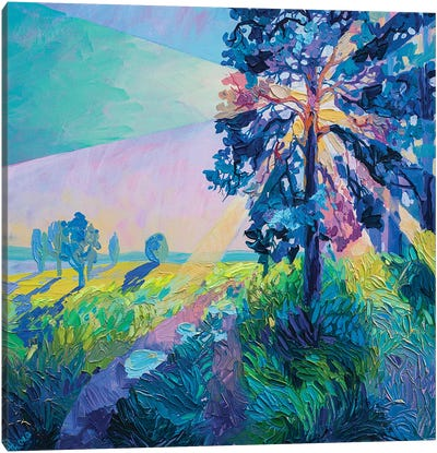 tree in the rays Canvas Art Print