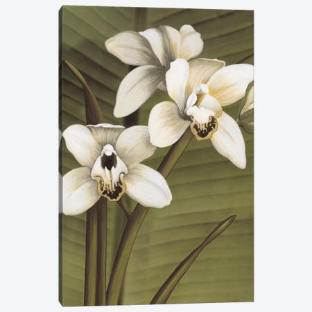 Orchid With Palm I Canvas Print #TVL5} by Andrea Trivelli Canvas Wall Art