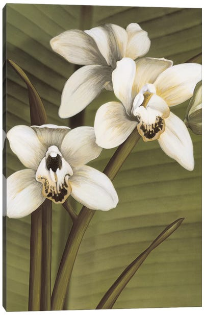 Orchid With Palm I Canvas Art Print