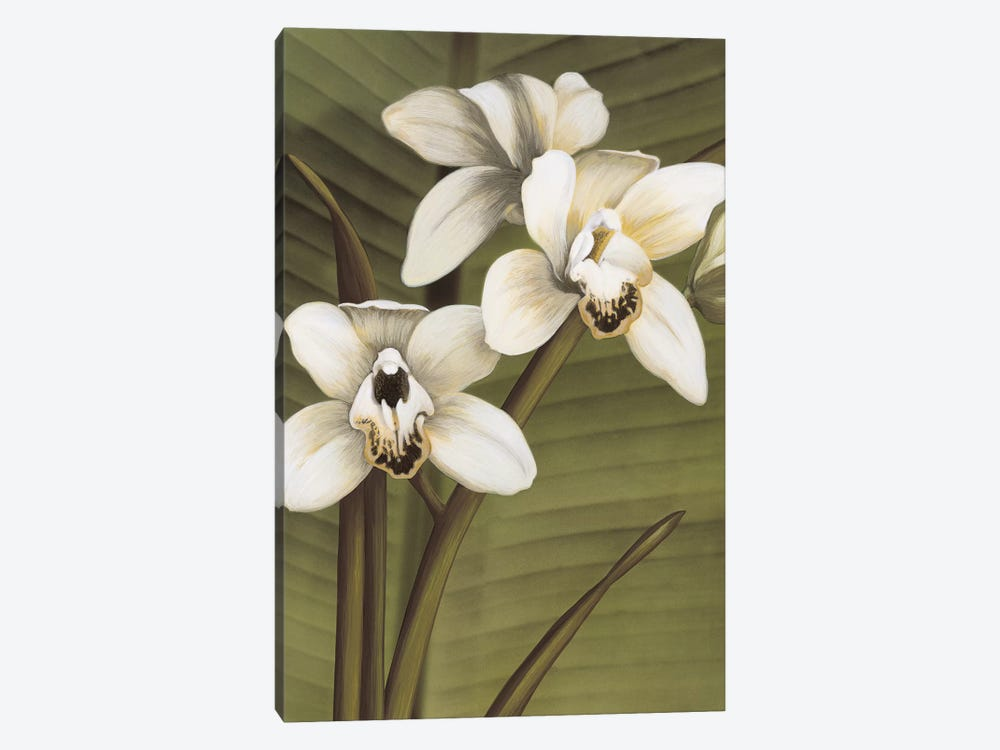 Orchid With Palm I by Andrea Trivelli 1-piece Canvas Art Print