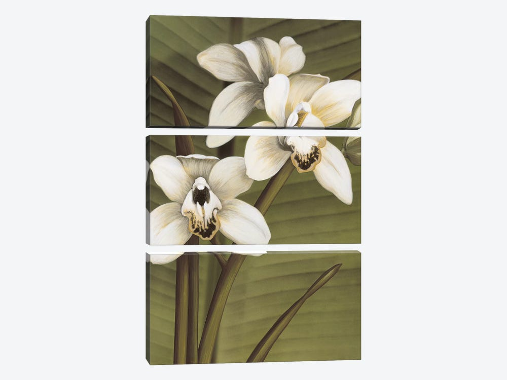 Orchid With Palm I by Andrea Trivelli 3-piece Canvas Print