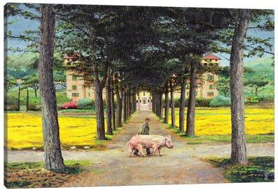 Big Pig, Pistoia, Tuscany Canvas Art Print