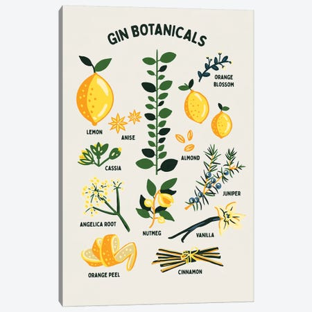 Botanical Gin Chart Canvas Print #TWG13} by The Whiskey Ginger Canvas Art Print