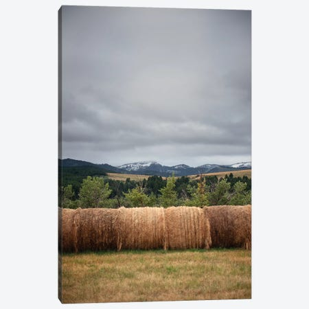 Bridger Mountain Field Canvas Print #TWG54} by The Whiskey Ginger Canvas Wall Art