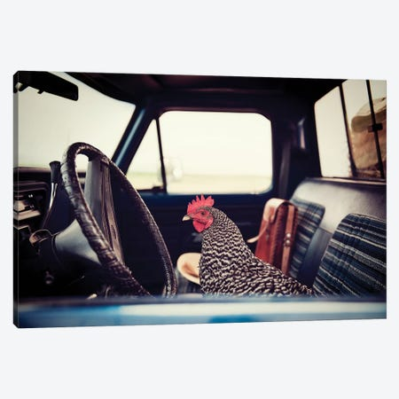 Hen Sunday Drive Canvas Print #TWG57} by The Whiskey Ginger Canvas Wall Art