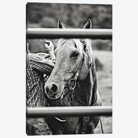 Saddling Horse Canvas Print #TWG62} by The Whiskey Ginger Canvas Art