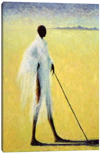 Long Shadow Canvas Art Print