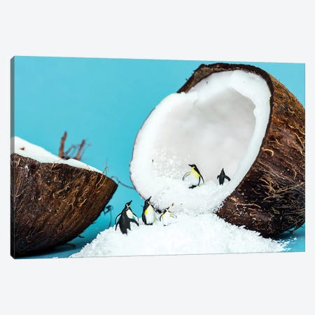 AntartiCoco Canvas Print #TWL2} by Tiny Wasteland Canvas Artwork