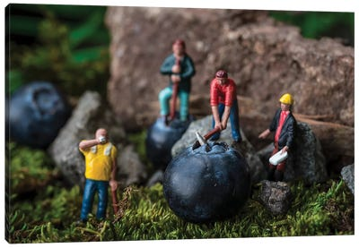 Blueberry Workers Canvas Art Print